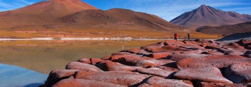 Atacama: Lagoas Altiplânicas e PedrasVermelhas